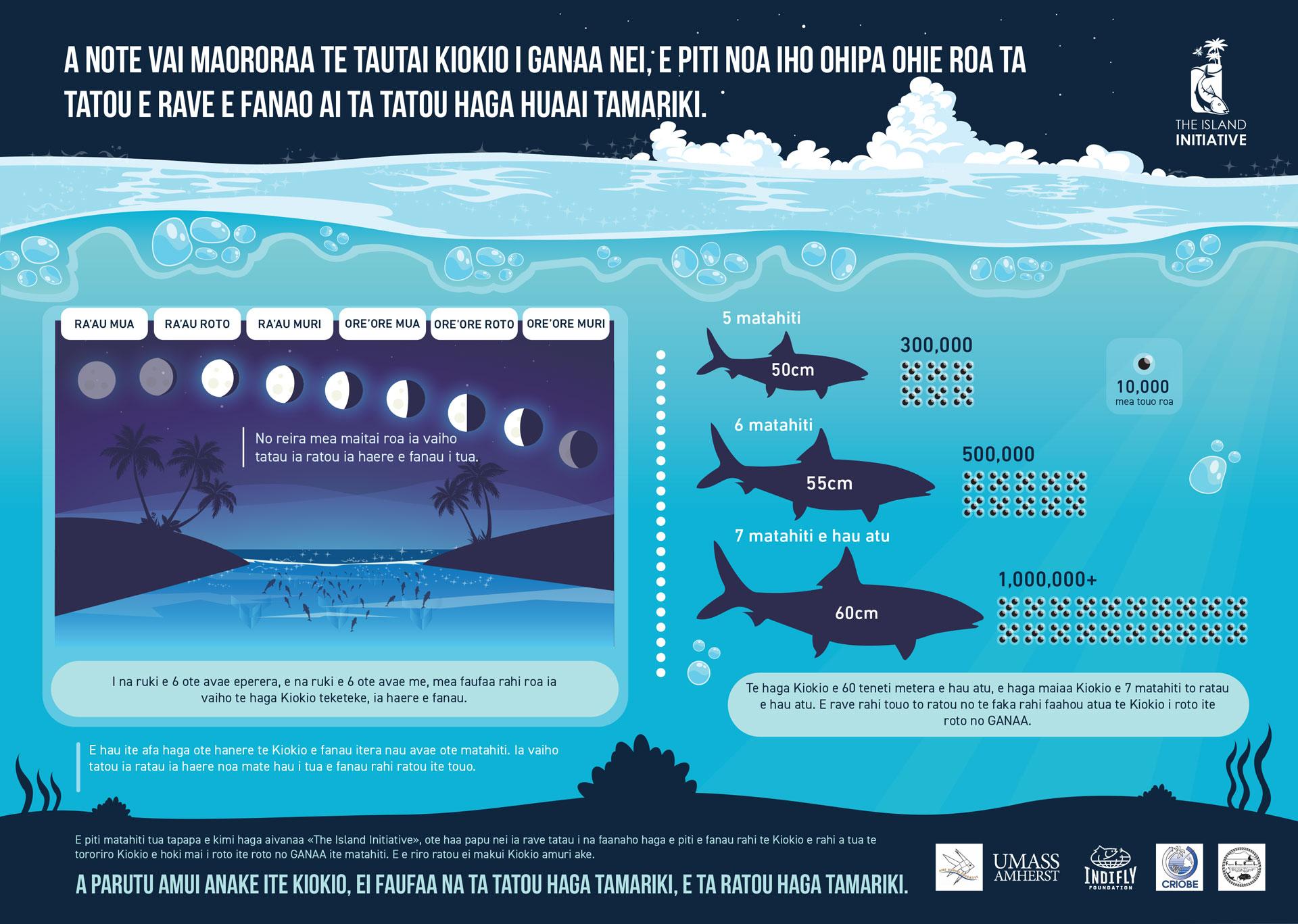 Anaa Atoll Infographic in paumotu